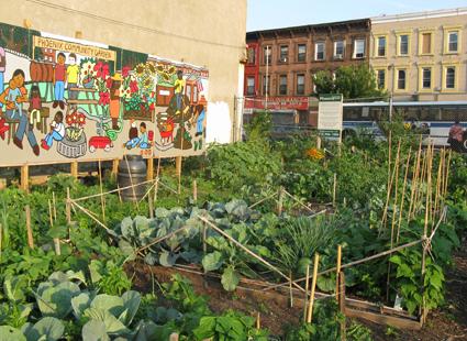 Not So) Secret Gardens | Brooklyn Community Foundation